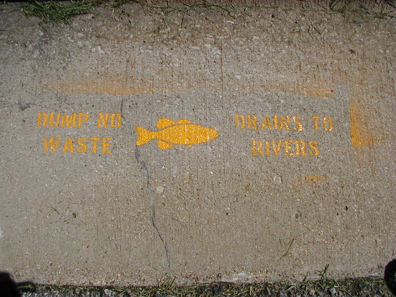 "Drains to Rivers"" sewer stencil photo that we used when working with the city of Bloomington Public Works Department."