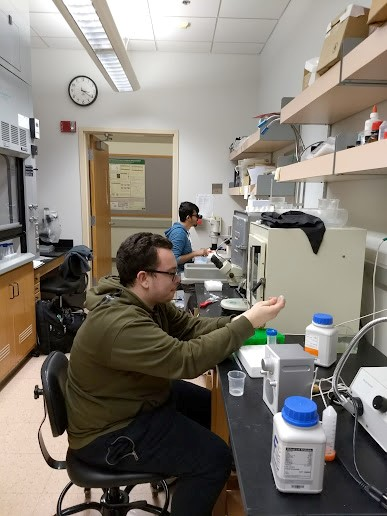 Thacker and Macak lab research
