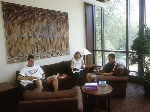 Ames Library Living Rooms