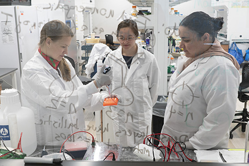 Alison Sweeney '01 (left), seen here through a dry-erase board, works with her research team at Yale University's Sterling Chemistry Lab.
