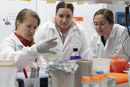 Sweeney and members of her team conduct research at Yale's Sterling Chemistry Lab.