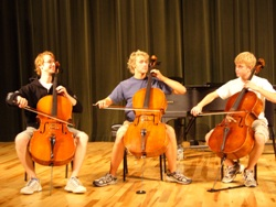 3 cellists