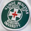 School of Nursing Honored for Study Abroad Program