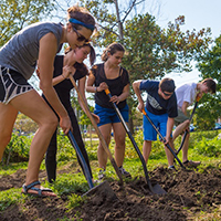 Students Learn Sustainable Food Practices in University Peace Garden