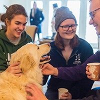 Campus Organizations - and Dogs - Help Relieve Final Exam Stress