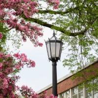 Illinois Wesleyan Announces Spring 2019 Dean's List