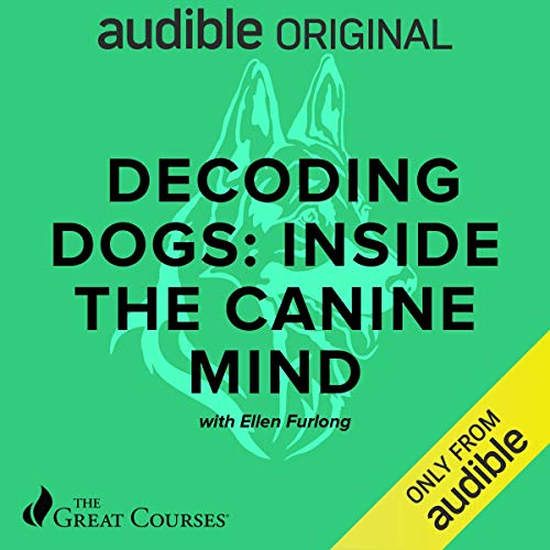 Decoding Dogs